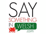 Say Something in Welsh (SSiW) - cwrs dwys 6 mis
